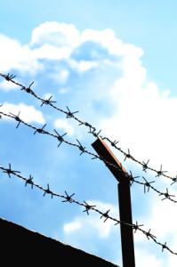 Refugee fence